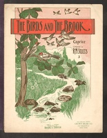 1898 Birds And The Brook R M Stults