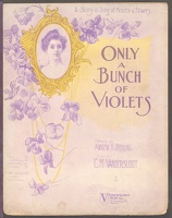 1906 Only A Bunch Of Violets Andrew B Sterling C M Vandersloot Williamsport PA
